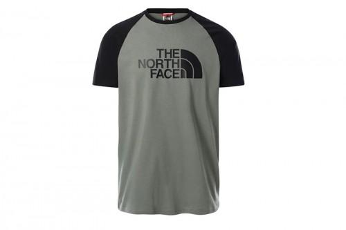 Camiseta The North Face RAGLAN EASY gris