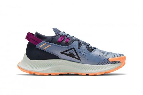 Zapatillas Nike Pegasus Trail 2 Azules