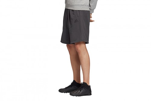 Pantalón adidas TAN SW LOGO gris