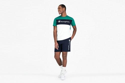 Camiseta Champion Crewneck Verdes
